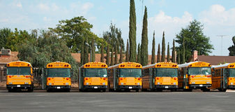 School buses Royalty Free Stock Images