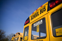 School buses from behind. Against blue sky Stock Image