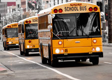 School buses driving. Down the street, three in a row royalty free stock photography