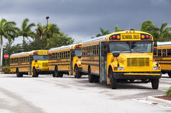 School Buses. A line of school buses at a parking lot stock photo