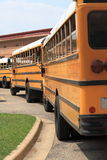 School buses lined up royalty free stock photos