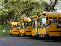 School buses lined up. Row of school buses lined up Stock Image
