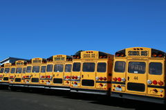 School buses lined up. The school buses are lined up and waiting to go Royalty Free Stock Image