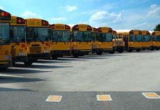 School Buses Parked Stock Photo