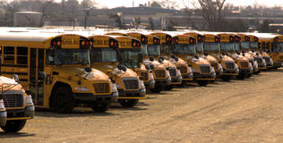 School Buses Parked in a Long Row Stock Image