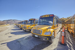 School buses parked on the outskirts of the city. Stock Photo