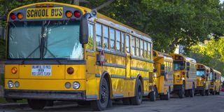School buses parked under the canopies of trees stock photos