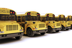 School buses with white top in a row. On a white background Royalty Free Stock Photos