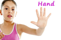 School card of close up young girls hand and fingers on white background. Close up of a young girls hand and fingers on a white background for a body chart guide royalty free stock photo