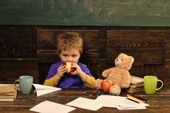 School change. School break. Hungry kid biting apple in classroom. Small boy playing with paper plane and teddy bear.  royalty free stock photos