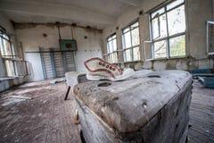 School in Chernobyl Zone Royalty Free Stock Photos