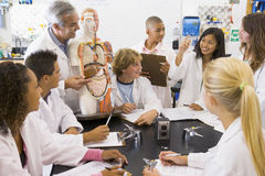 Free School Children And Their Teacher In Science Class Royalty Free Stock Images - 6082059