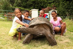 School children with giant tortoise on St Helena Stock Photos