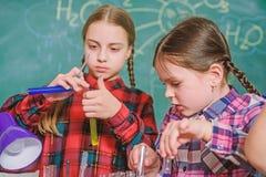 School classes. Kids adorable friends having fun in school. School chemistry lab concept. Practicum based teacher royalty free stock images