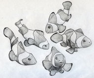 School of clown fish. Sketch of five little clown fishes drawn by hand with pencil on paper Stock Photo