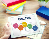 School College Education Intelligence Concept Stock Images
