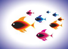 School of colorful fishes swimming together in sea Royalty Free Stock Photos