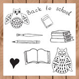School design with owls and books. Hand drawn school design elements with hand drawn owls, books, pencil and brush. Back to school design. Vector sketch. Doodle Stock Photos
