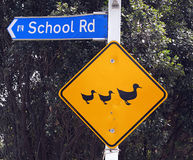 School - direction sign post. School road direction sign post with attention to drivers yellow sign stock photos