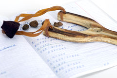 School exercise book in mathematics and sling. School exercise book in mathematics sling and rocks Stock Photo