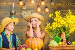 School festival holiday. Elementary school fall festival idea. Kids girl boy wear hat celebrate harvest festival rustic royalty free stock photos