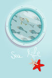 School of fish swimming past a ships porthole Royalty Free Stock Photography
