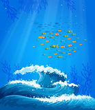 A school of fish and the waves Royalty Free Stock Image