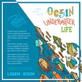 Vector ocean underwater life background. School of fish for your design. Various fish swim together. There is copy space for your text Royalty Free Stock Photography