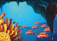 A school of fishes going to the coral reefs inside the cave. Illustration of a school of fishes going to the coral reefs inside the cave Stock Images