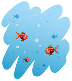 A school of fishes. On a white background Royalty Free Stock Photo