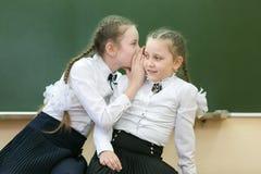School friend tells a secret in his ear. Schoolgirls classmates share their secrets of secrets telling a whisper in his ear near the blackboard in the offic royalty free stock photography