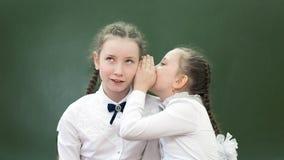 School friend tells a secret in his ear. Schoolgirls classmates share their secrets of secrets telling a whisper in his ear near the blackboard in the office stock images
