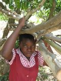 School  girl carrying a  bundle of firewood in rural Zimbabwe. Royalty Free Stock Photos