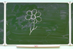 School green board royalty free stock images