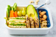 School healthy lunch box with sandwich, cookies, fruits and avocado on white background. School healthy lunch box with sandwich, cookies, nuts, fruits and royalty free stock photos