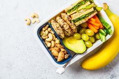 School healthy lunch box with sandwich, cookies, fruits and avocado on white background. School healthy lunch box with sandwich, cookies, nuts, fruits and stock photo