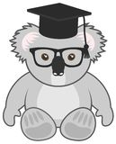 School koala Royalty Free Stock Image