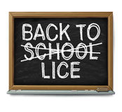 School Lice Problem Royalty Free Stock Photography