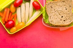 School lunch box. Bread, orange, baby corns, carrot and tomatoes in green plastic container. Top view, red background stock photos