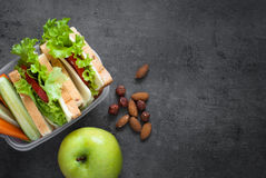 School Lunch box Royalty Free Stock Photos
