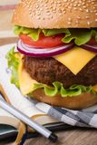 School lunch: fresh hamburger with meat and cheese Stock Images