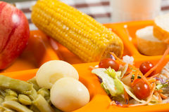 School lunch tray Stock Images