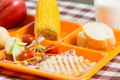 School lunch tray Royalty Free Stock Photo