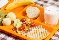 School lunch tray Royalty Free Stock Photos