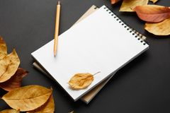 School notebook on a black background with autumn leaves. Spiral notepad on a table Royalty Free Stock Image