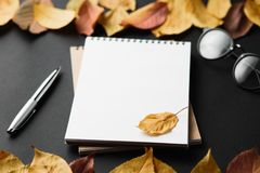 School notebook on a black background with autumn leaves. Spiral notepad on a table Stock Photo