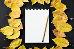 School notebook on a black background with autumn leaves. Spiral notepad on a table Royalty Free Stock Photos