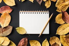 School notebook on a black background with autumn leaves. Spiral notepad on a table Stock Photos