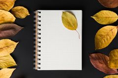 Spiral notebook on black background with autumn leaves, spiral o. School notebook on a black background with autumn leaves, spiral notepad on a table Royalty Free Stock Image