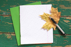 School notebook and pen Royalty Free Stock Photos